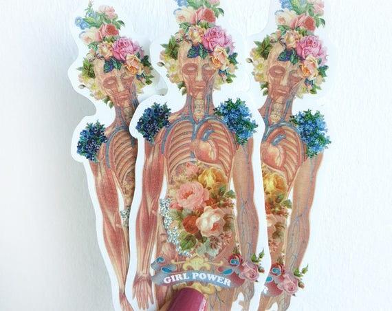 Flowery Body Woman ,Anatomy stickers, Feminist sticker, Feminist gift, laptop tickers, stickers, sticker, stickers laptop,anatomy art STC015