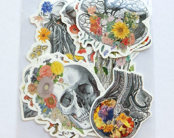 Human anatomy with flowers set, laptop stickers, stickers, Decal sticker, medical anatomy stickers, anatomy, sticker STC019