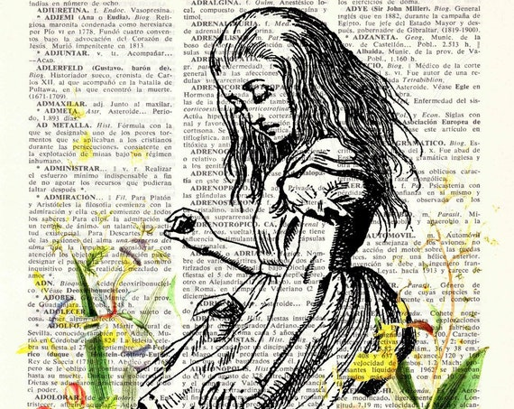 Alice in wonderland with wild Flowers Wall Art the best choice for Christmas gifts ALW001b