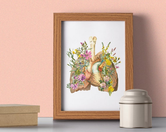 Soft Pink Colour Flowery Lungs and heart Anatomy wall poster SKA099WA4