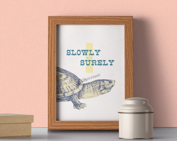Slowly but surely, Learn from turtle wall poster ANI142WA4