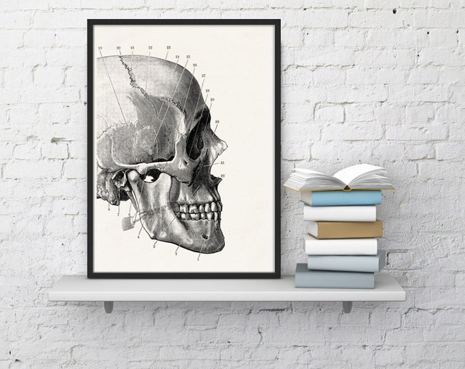 WHITE PAPER ART PRINTS