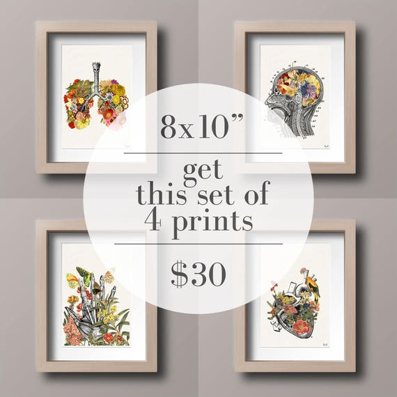 "Set of Four 8x10"" for 30USD. White Prints for sale Cool Anatomical poster art  House Decor Wall, Art Set  SET016"