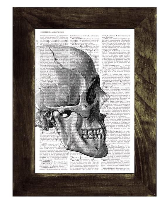Skull - Human Head Anatomy Study - Dictionary Book Page Print - Anatomy Art on Upcycled Book Page SKA012