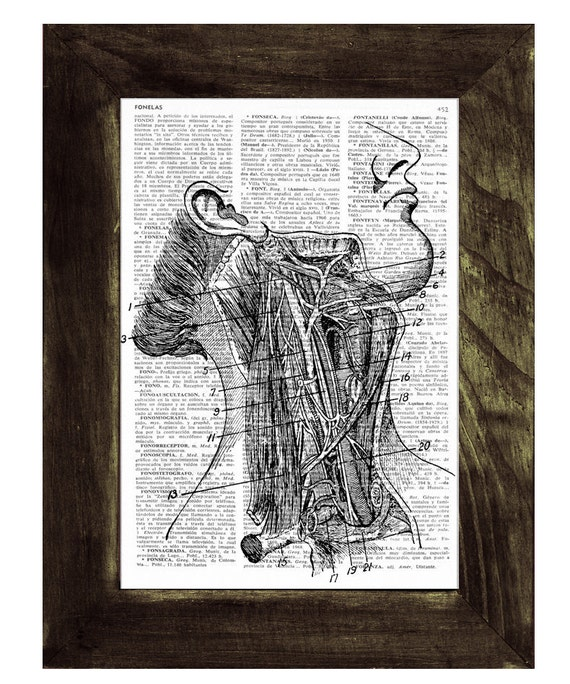Neck Arteries  anatomy Art Print. Gift for medical students- Upcycled Book Print, Doctors gift SKA023