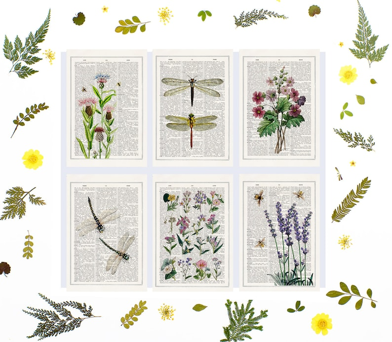 Spring Bees and Lilac flowers Postcards  Set of 6  Floral image 0