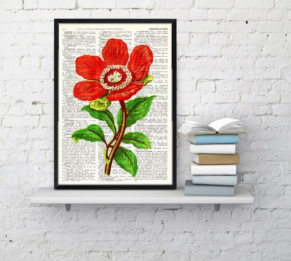 Red Peony flower Vintage Book Print Dictionary or Encyclopedia Page-  Peony flower  on Vintage  Book art BFL119