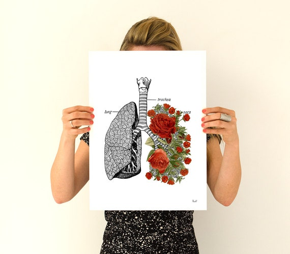 Human Lungs  with roses, anatomy art, wall art, wall decor, poster, anatomy, anatomy poster, science, medical art, human anatomy, SKA064WA3