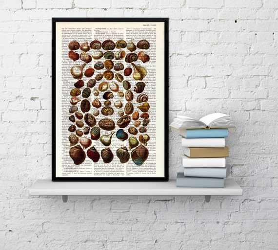 Art Print Shell collage IV  Print on Vintage Dictionary page art print, sea life art decor, beach print SEA112