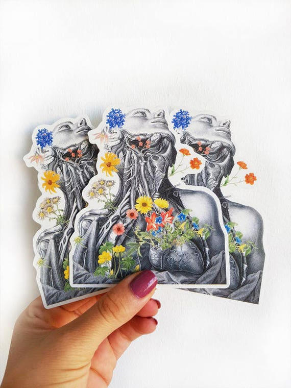Neck and veins anatomy study laptop stickers, Perfect gift for doctor STC016