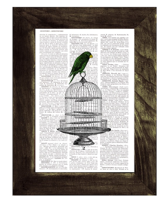 Vintage Cage with Parrot, Wall art, Wall decor,   Vintage Book sheet, Nursery art, Prints, Wholesale ANI077