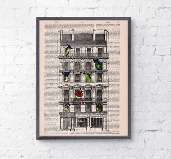 Bird House, Wall art, Wall decor, Digital prints animal, Giclée, Vintage Book sheet, Nursery wall art, Prints, Bird prints ANI123