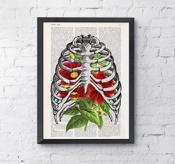 Rib cage with Dahlia human Anatomy Print Anatomy art, love art, art, Rib cage and flowers print SKA065
