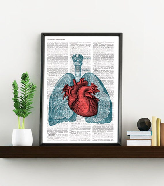 Heart and Lungs  Anatomy  book page Print on Vintage Encyclopedic page- upcycled gift- Anatomy art SKA030