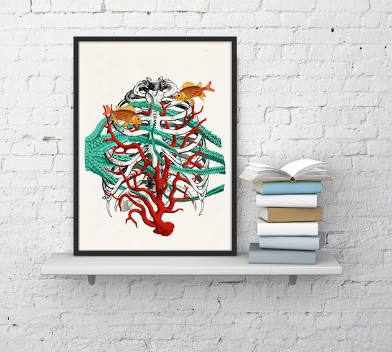 Human Sternon at the seabed, Anatomical art, Anatomy art, Wall art, Wall decor, Gift for Doctor, Science art, Wholesale, Poster, SKA091WA4
