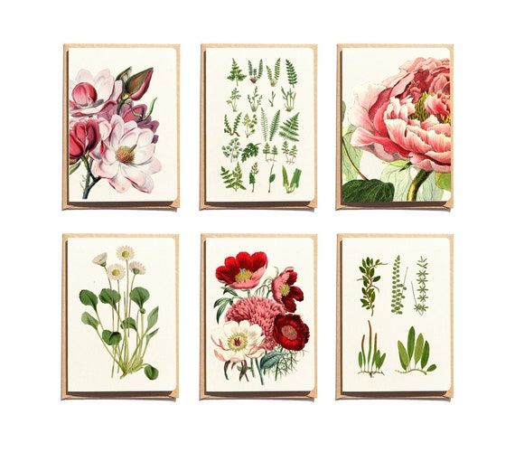 Botanical Note Card Set