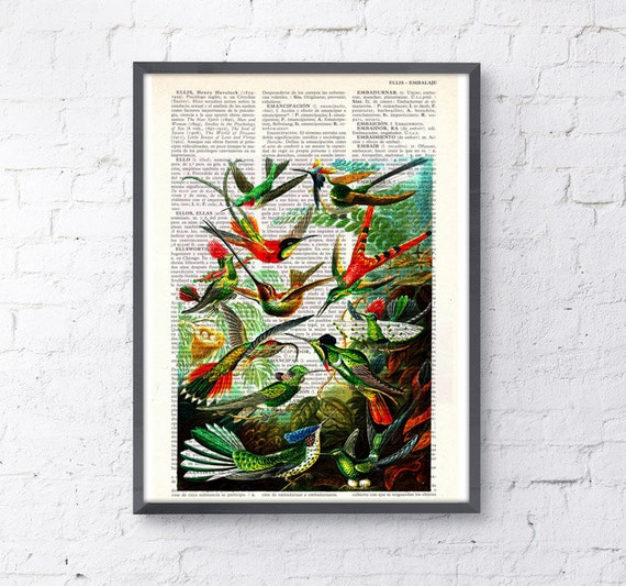 Wild Hummingbirds Print on Vintage Dictionary Book perfect as Chritmas gifts ANI110b