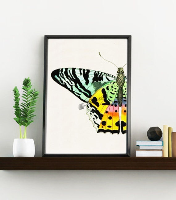 Christmas gifts for mom Wall art print Butterfly detail butterfly collage print Nature collection wall art print Gift her Nursery BFL102WA4