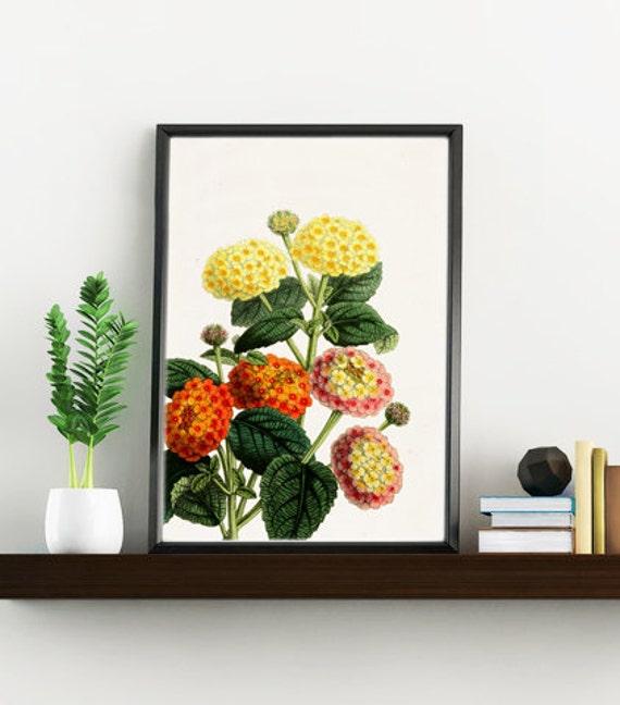 Lantanas Nature Flower botanical collage BFL110WA4