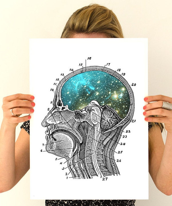 Cosmic Brain Anatomy Art Wall Art Wall Decor Poster Anatomy Brain