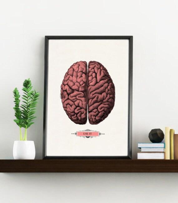 Human Brain, Anatomical art, Anatomy art, Wall art decor, Gift for Doctor, Medical, Science art, , SKA054WA4