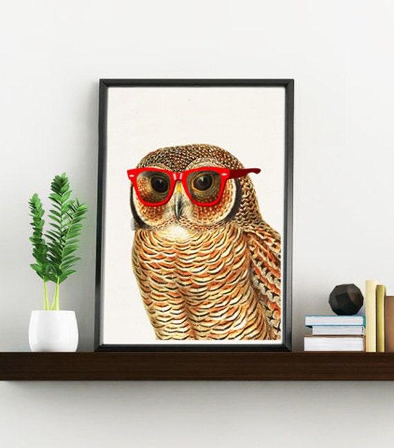 Cool owl with sunglasses Funny animal wall art decor ANI035WA4