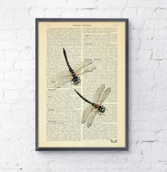 Christmas gifts for mom Dragonfly Dictionary Book Print - nature art house decor wall art Altered art on upcycled book pages BFL026