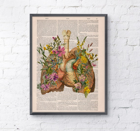 Christmas Gifts Pink Flowery Lungs And Heart Human Anatomy Etsy