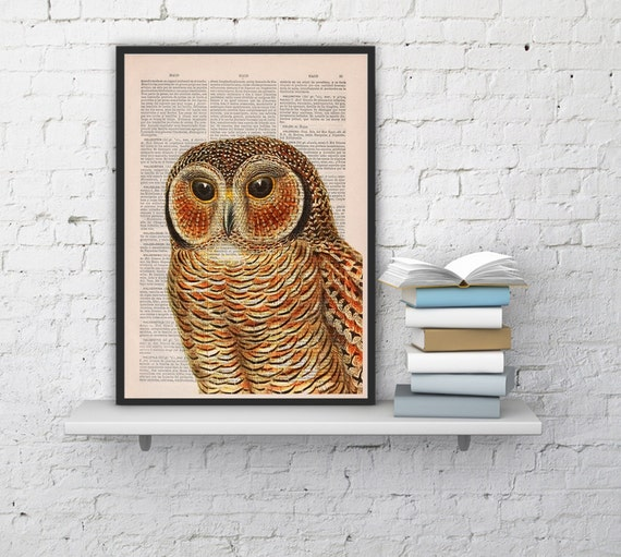 Owl, Wall art, Wall decor,   Vintage Book sheet, Nursery wall art, Prints, Wholesale, Funny art, ANI019