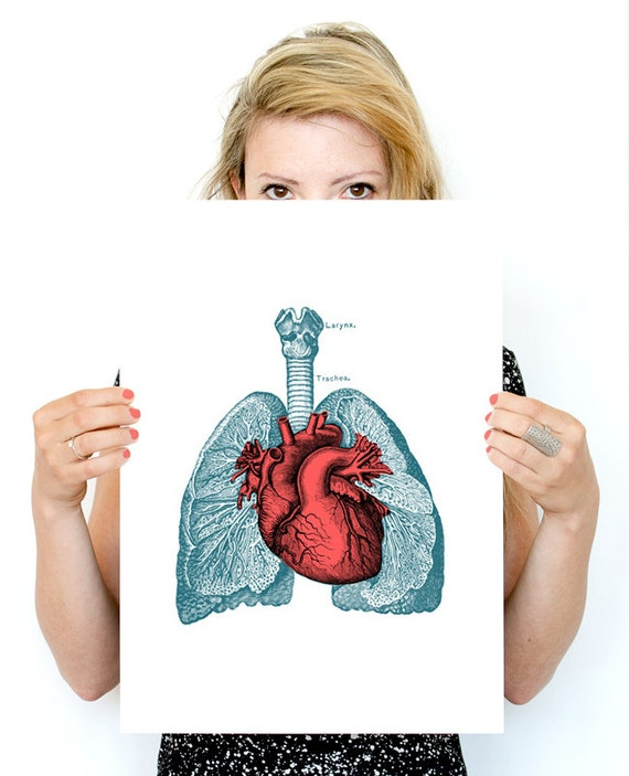 Christmas gifts for mom Heart and Lungs Anatomy print -  prints wall art Anatomy prints wall decor ,gifts for doctor wall art, SKA030WA3