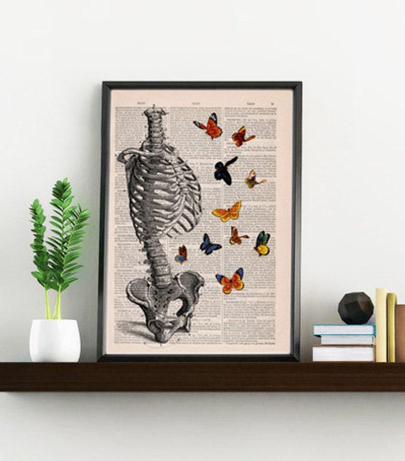 Human Skeleton Torso full of butterflies. Anatomy Print gift  image 0