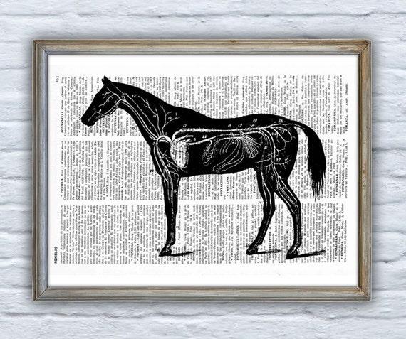 Art  Horse, Wall art, Wall decor, Digital prints animal,  Vintage Book sheet, Nursery wall art, Prints, Horse prints,  ANI161
