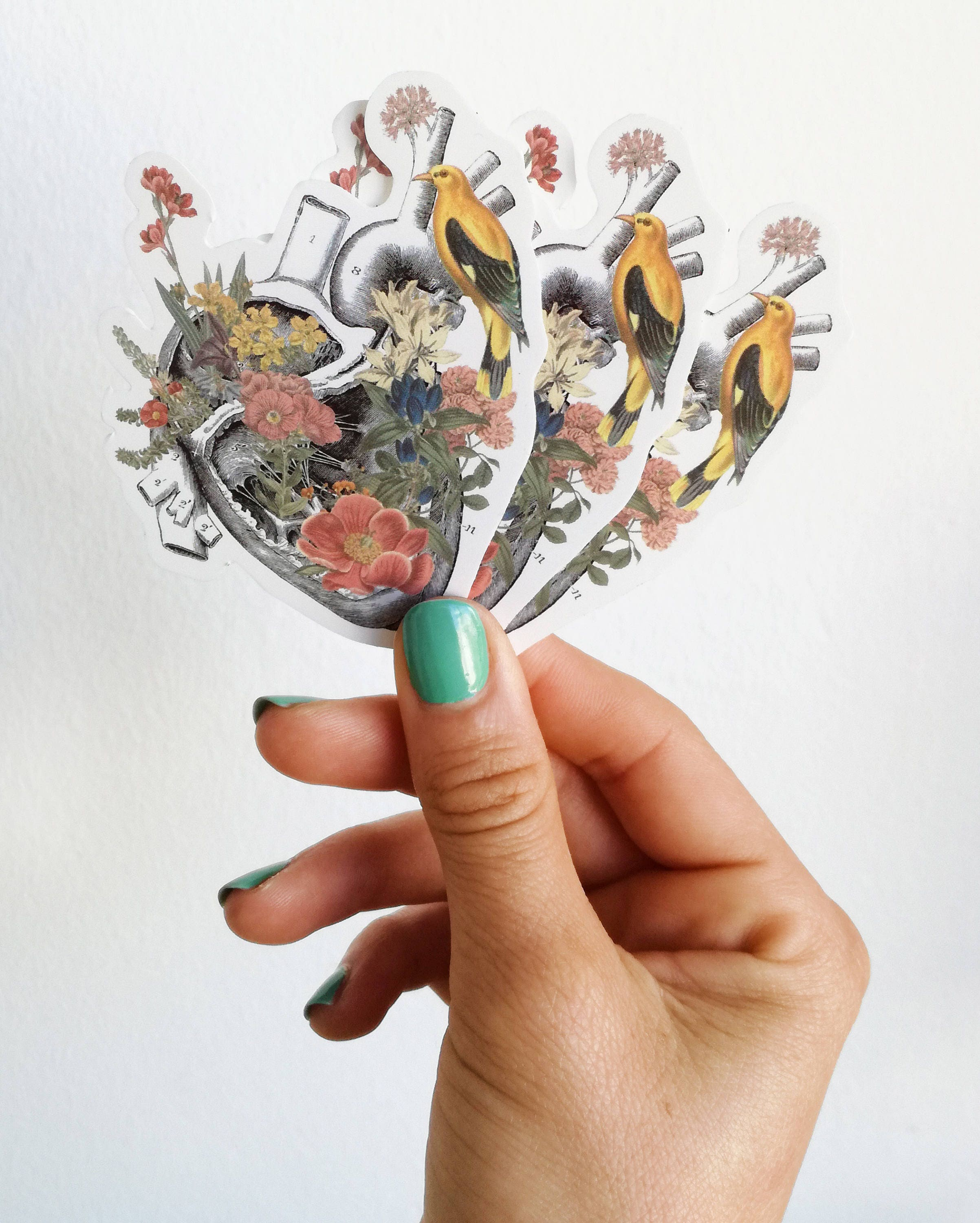 Human Anatomy Heart With Yellow Bird And Flowers Stickers Stc006