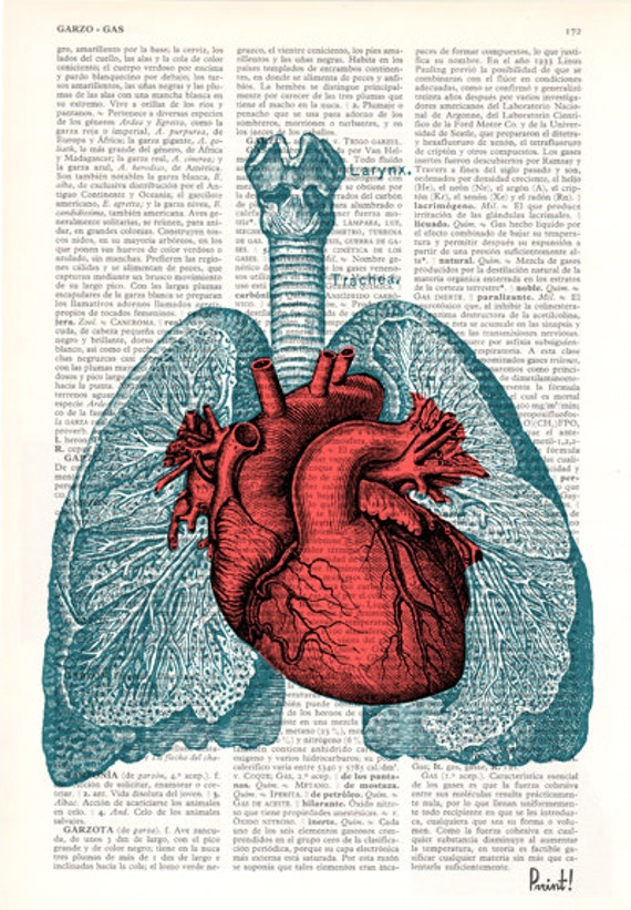 Christmas Gifts Heart And Lungs Anatomy Book Page Print On Etsy
