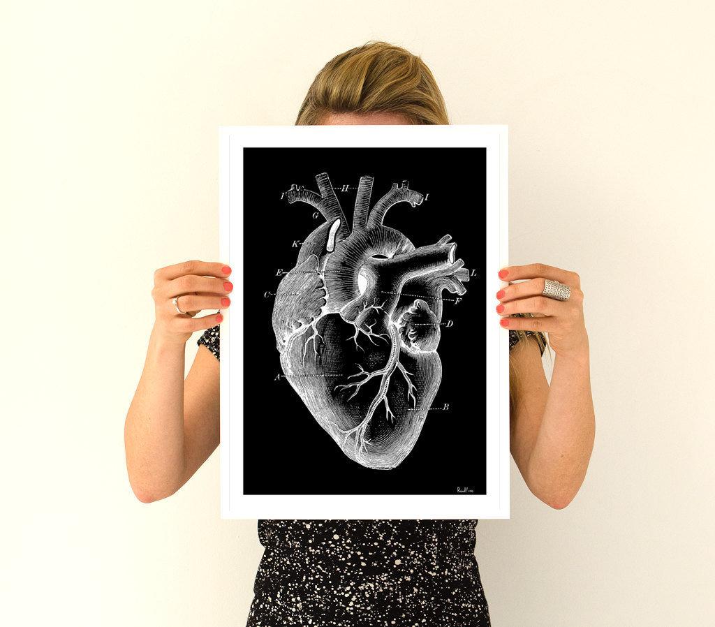 Human heart, anatomy art, anatomical art, wall art, wall decor ...