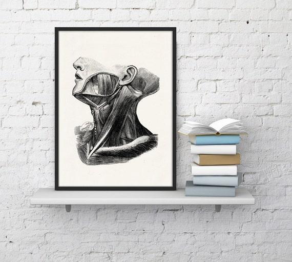 Christmas gifts for mom Human anatomy print, Anatomy art, Anatomical art, Wall art decor, Anatomy, Medical gift,  Gift for doctor SKA044WA4
