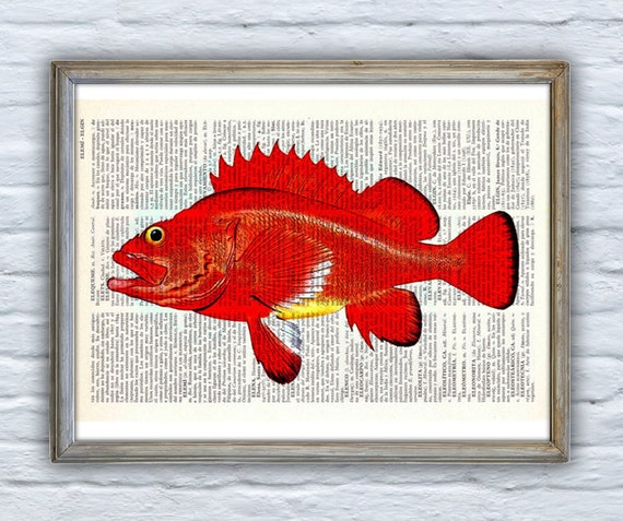 Art Print Hot orange rock fish Print Vintage Dictionary sheet Bech house decor Fish poster print giclee monkfish SEA064