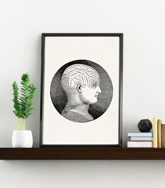 Brain Phrenology study Anatomy art SKA126WA4