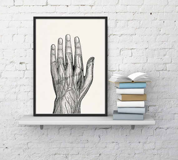 Human Hand Veins Black and White Anatomy art SKA037WA4