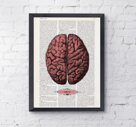Brain, USE IT, Human Anatomy art Dictionary Print Brain print, wall art college dorm gift SKA054