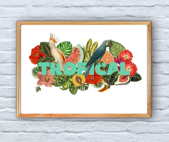 Tropical Wall Art, Home decor, Typography art and amazing tropical plants, Giclee Print, Wall art, Wall decor, Tropical Home decor BFL219WA3