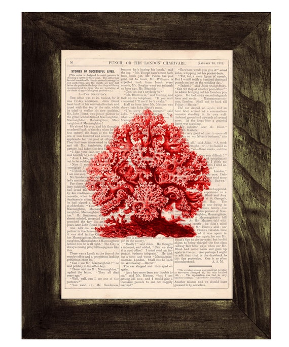 Coral Vintage Book Print Dictionary or Encyclopedia Page Book print Gorgeous Red Coral Print  SEA077