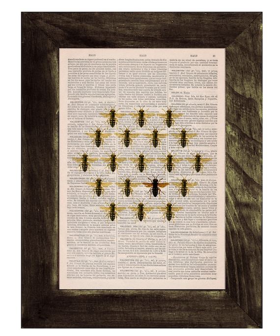 Queen bee in a honeycomb cell illution Print on Dictionary Book page Butterfly Art on Upcycled Art Home Decor BFL116