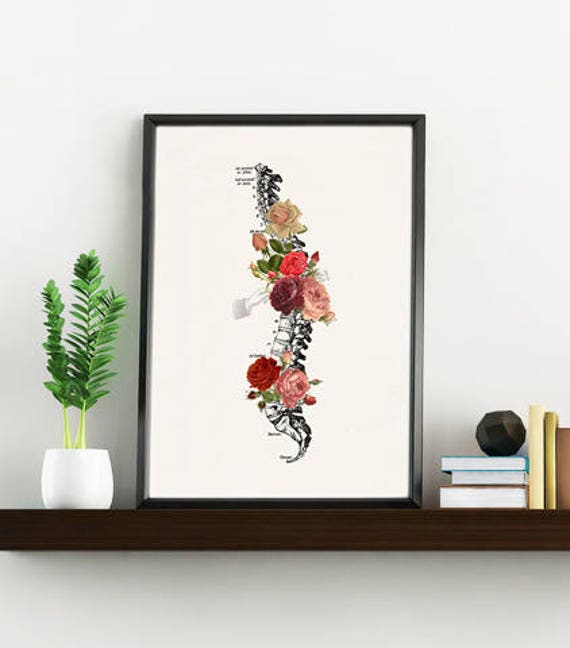Springtime Roses Spine. Doctors gift Print- A4 Wall art Human anatomy print- Chic Science prints wall art flowers art, Trunk print SKA137WA4