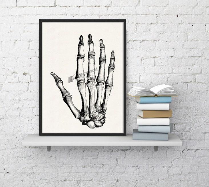 Hand Bones Anatomic Study Anatomy Art Anatomical Art Wall Art