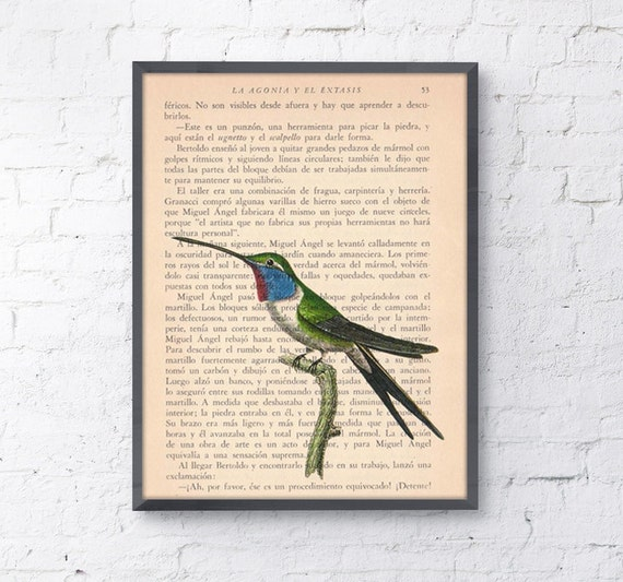Hummingbird, Wall art, Wall decor,   Vintage Book sheet, Nursery wall art, Prints, Wholesale,  ANI118