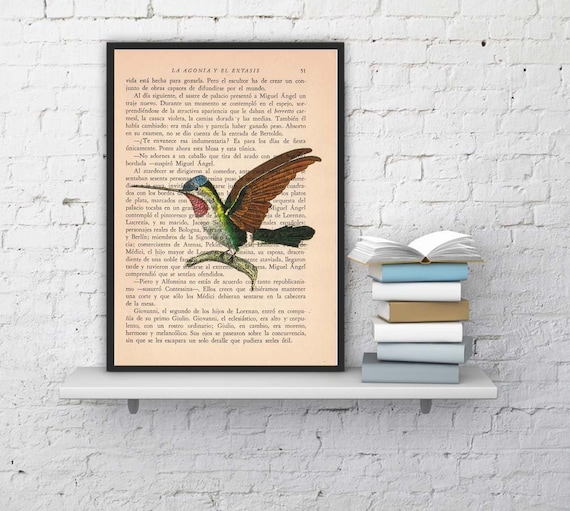 Hummingbird Print on Vintage Book altered art dictionary page illustration book print ANI185