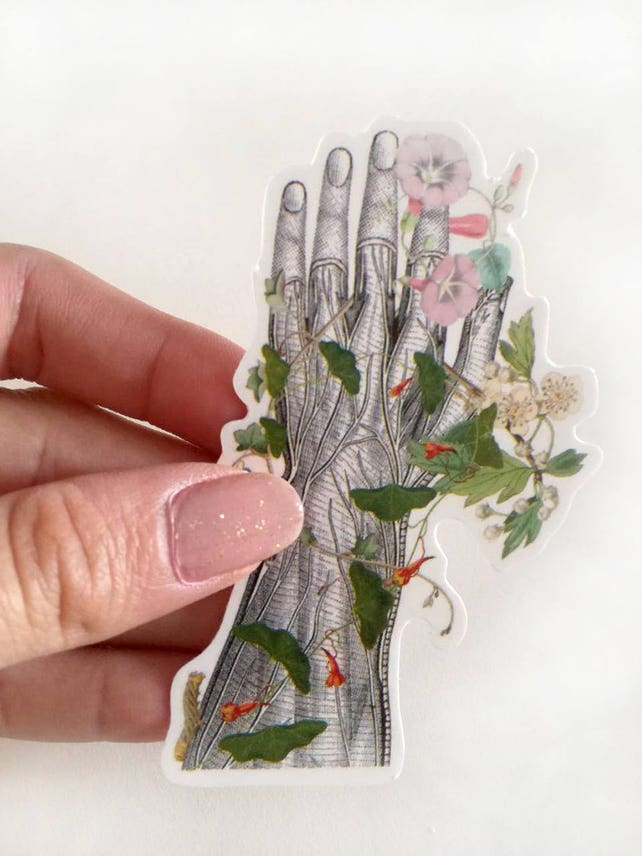 Anatomy Stickers Set Hand Detail Brain With Flowers Laptop Etsy