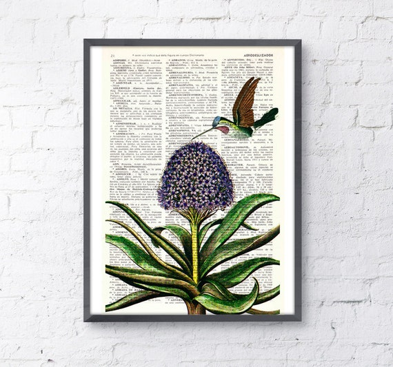 Hummingbird, Wall art, Wall decor,   Vintage Book sheet, Nursery wall art, Prints, Wholesale  ANI121