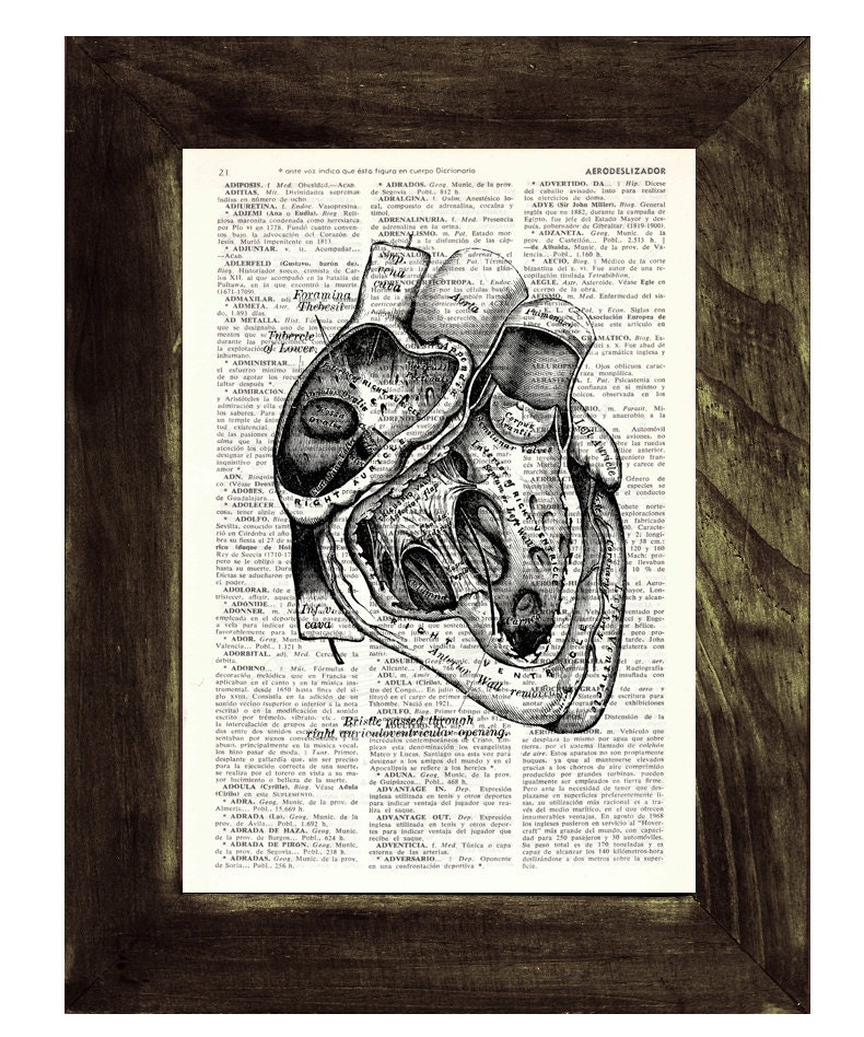 Heart section Anatomy Wall art Dictionary Print on Vintage ...